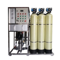1000LPH Water Plant RO System for sale