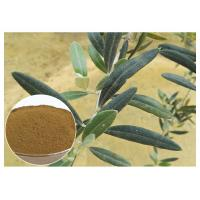 Buy cheap 80 Mesh Natural Olive Leaf Extract Powder Food Grade Improving Immune System product