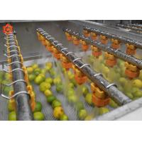 Buy cheap Small Herb Vegetable Processor Machine Fruit Vegetable Cleaner High Pressure Water Flush product