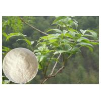 Buy cheap Plant leaf extract powder , anti-alcohol Ampelopsis grossedentata Extract powder from wholesalers