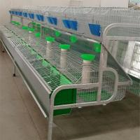 hotsale automatic rabbit battery poultry cage for Qatar poultry farming