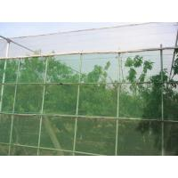 Buy cheap HDPE Monofilament Inst Mesh Netting 20 30 40 50 Mesh Count Anti Insect Proofing Net product