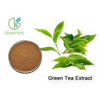 China Pure Natural Green Tea Extract Weight Loss , Bulk Supplements Green Tea Extract Anti - Cancer on sale