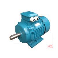 Buy quality YE3-4 pole IE3 High Efficiency Three Phase Asynchronous Motors 380V 50HZ at wholesale prices