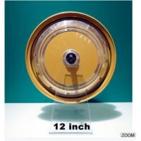 Buy cheap DM-260 12inch gearless brushless hub motor from wholesalers