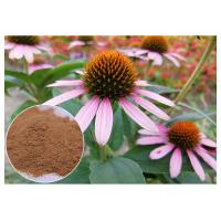 Buy cheap Chicory Acid Antifungal Plant Extracts Echinacea Pururea Powder From Whole Herb product