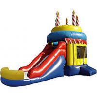 Buy cheap Inflatable Bounce Slide (BS-04) product