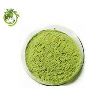 Buy cheap High Quality Barley Grass Extract for anti-sunburn; anti-cancer Hordeum vulgare L.;enhanced immunity Wheat grass Extract product