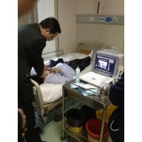 """Buy quality 10 """" SVGA monitor Portable Ultrasound Scanner / 64 - Frame Cinema Loop at wholesale prices"""
