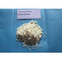 Buy cheap Trenbolone Enanthate Powder / Tren E For Muscle Gaining CAS 10161-33-8 product