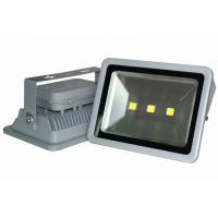 Buy quality Waterproof Outdoor High Power LED Floodlight Aluminium Alloy IP65 150W at wholesale prices