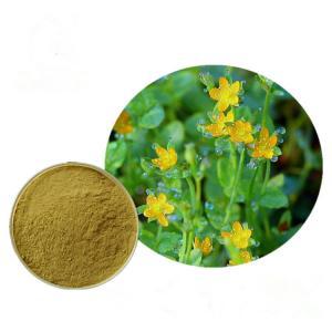 Buy cheap Free sample supply Hypericin Perforatum Extract, Hypericum Extract Hypericin for from wholesalers