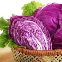 Quality Natural Pigment/colorant Purple cabbage powder with anthocyanin 5%;High Quality for sale