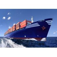 Buy cheap Shipping Agent from China to Mexico,Freight Forwarder,Ocean Freight,Sea Freight from wholesalers