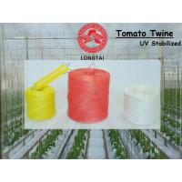 1mm 1.5mm Colorful Polypropylene Twine For Tomato Tying / Poly Twine Rope for sale