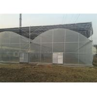 China Large Size Reinforced Plastic Sheeting Greenhouse With Hydroponics System on sale