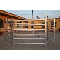 Buy cheap 1.8x2.1m Corral Fence Panels 6 Rails Oval 40x80mm 50mm*50mm Galvanized Square Tube product