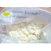 Buy cheap White Crystalline Powder Muscle Building Steroid Hormone Powder Testosterone Enanthate product