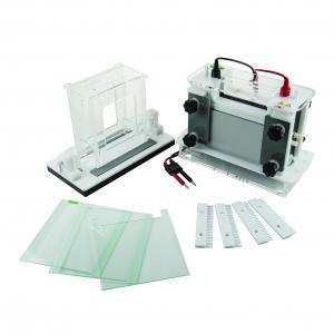 Buy cheap Automatic Protein  Gel Electrophoresis Kit , Jy-scz9 Gel Electrophoresis Tank product