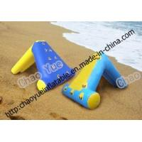 Buy cheap Inflatable Water Slide (CY-71) product