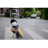 Buy quality Medium Large Breed Dog Clothes Raincoat Casual Wear For Pet Puppy Clothing OEM at wholesale prices