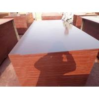 Buy cheap 18mm Poplar Film Faced Plywood For Construction product