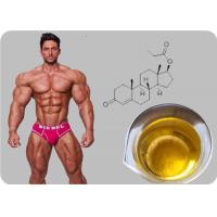Buy cheap Testosterone Propionate Oil - based Injectable Testosterone Steroid Powder product