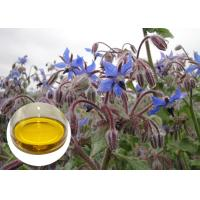 Buy cheap Borage Seed Organic Plant Oils Omega 6 GLA Anti Oxidation For Eczema product