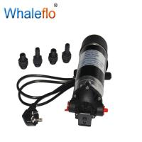 Buy cheap Whaleflo DP-160M high pressure 160psi 5.5LPM 230v ac electric pressure portable from wholesalers