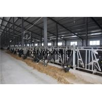 Buy cheap Good Price Poultry Farm Building Steel Structure Sheds for Caw /Chicken/ Goats from wholesalers