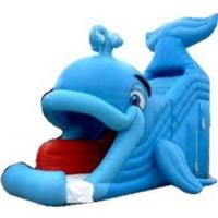 Buy cheap Inflatable Water Slide (C11) product
