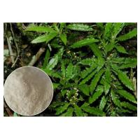 Buy cheap 99% Huperzia Serrata Herbal Plant Extract Powder For Alzheimer'S Diseases product