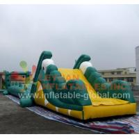 Buy cheap Inflatable Water Game, Inflatable Crocodile Water Toy (LY-W22) product