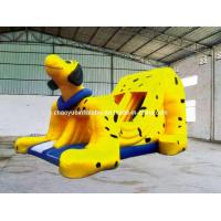 Buy cheap Inflatable Slide (CY-V12) product