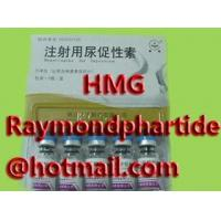 Buy quality HMG, Menotrophin for Injection, Menotropins for Injection at wholesale prices
