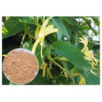 Buy cheap Anti Inflammatory Honeysuckle Flower Extract , 5% Chlorogenic Acid Lonicera Japonica Extract product