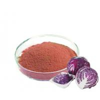 Buy cheap High Quality Raw Material Red cabbage extract; Purple cabbage powder with scavenging free radicals anthocyanin 5% product