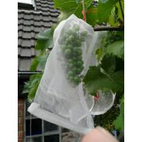 Buy cheap 100% HDPE UVRadiationAgents 3% Fruit Tree Covers , Bags To Cover Fruit On Trees product
