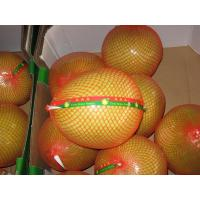 Buy cheap Sweet Pomelo product