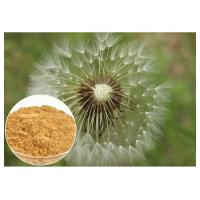 Buy cheap Brown powder Natural Anti Inflammatory Supplements Extracted from Dandelion Root product