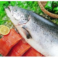 Buy cheap FISH PRODUCTS Salmon product