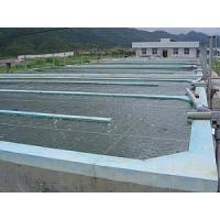 Industrial Fish Farming projects