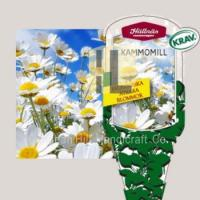 Plant Labels plant hang tag plastic flower label for gardening