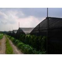 Buy cheap insect proof net for greenhouse product