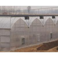 Buy cheap Gothic Multi-span Greenhouse from wholesalers