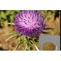 Buy cheap Milk Thistle Extract (Silymarin) from wholesalers